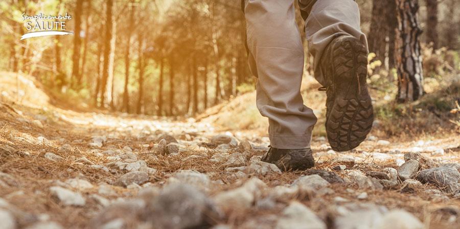allergico agli acari? cammina nei boschi