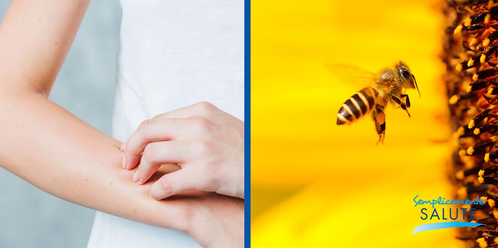 La chimica dietro al pic di un ape