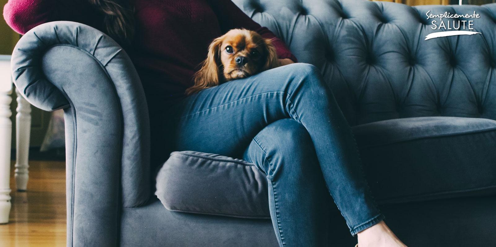 Stare troppo sul divano fa male alle vene